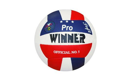 Minge volei Winner Pro