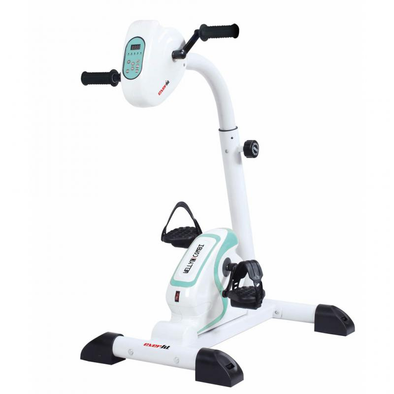 Bicicleta Everfit Welly-E Combi